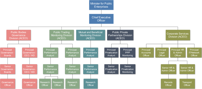 Ministry for Public Enterprises Organisational Structure small